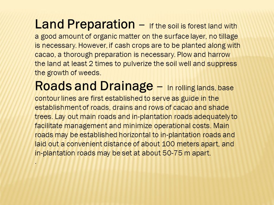 Land Preparation – If the soil is forest land with a good amount of organic matter on the surface layer, no tillage is necessary. However, if cash crops are to be planted along with cacao, a thorough preparation is necessary. Plow and harrow the land at least 2 times to pulverize the soil well and suppress the growth of weeds.