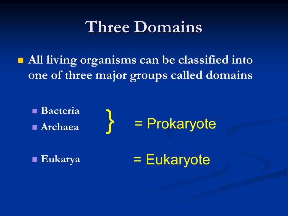 } = Prokaryote Three Domains = Eukaryote