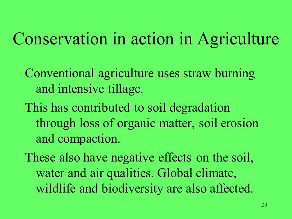 Conservation in action in Agriculture