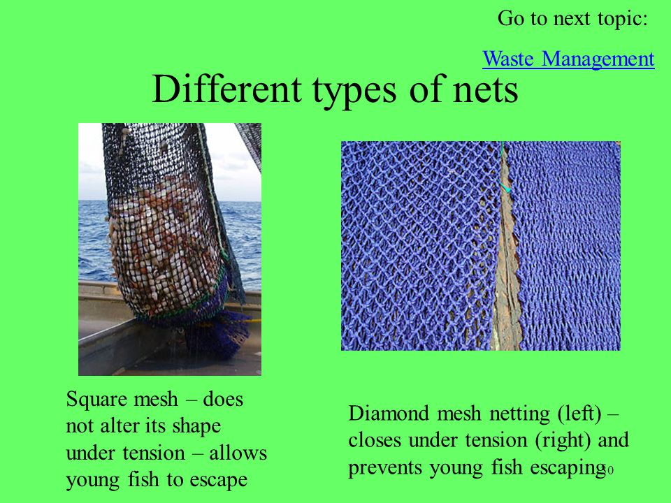 Different types of nets
