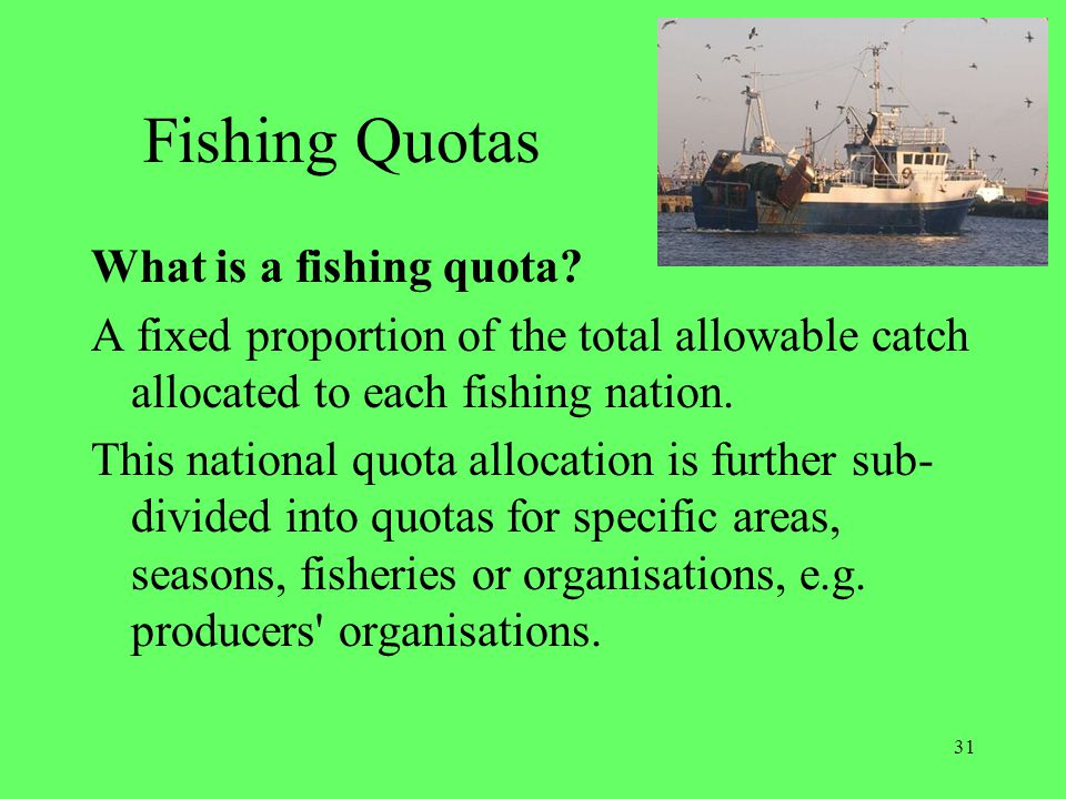 Fishing Quotas What is a fishing quota