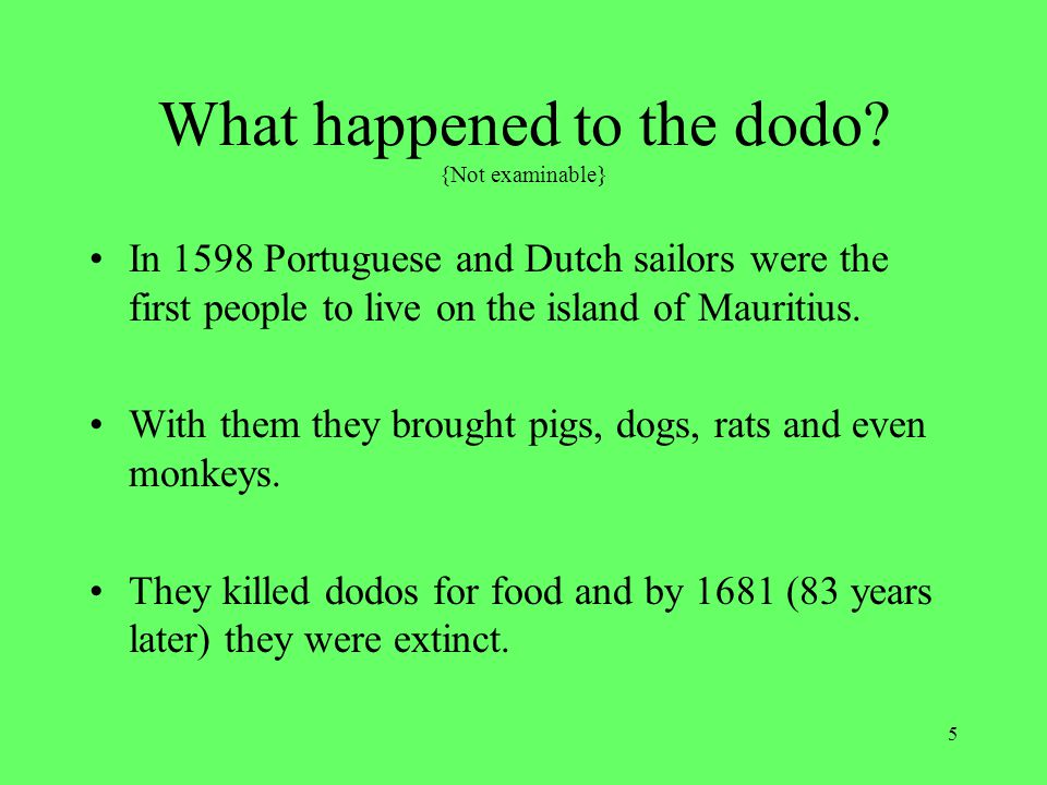 What happened to the dodo {Not examinable}
