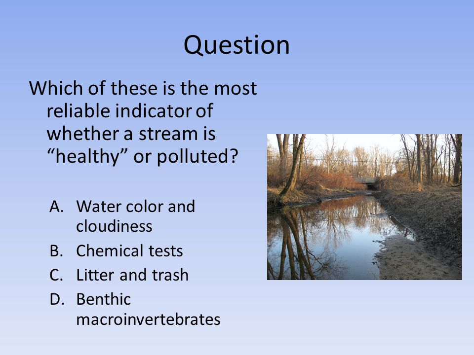 Question Which of these is the most reliable indicator of whether a stream is healthy or polluted