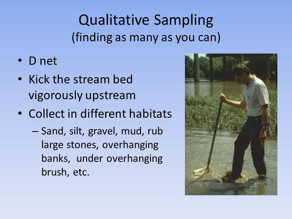 Qualitative Sampling (finding as many as you can)