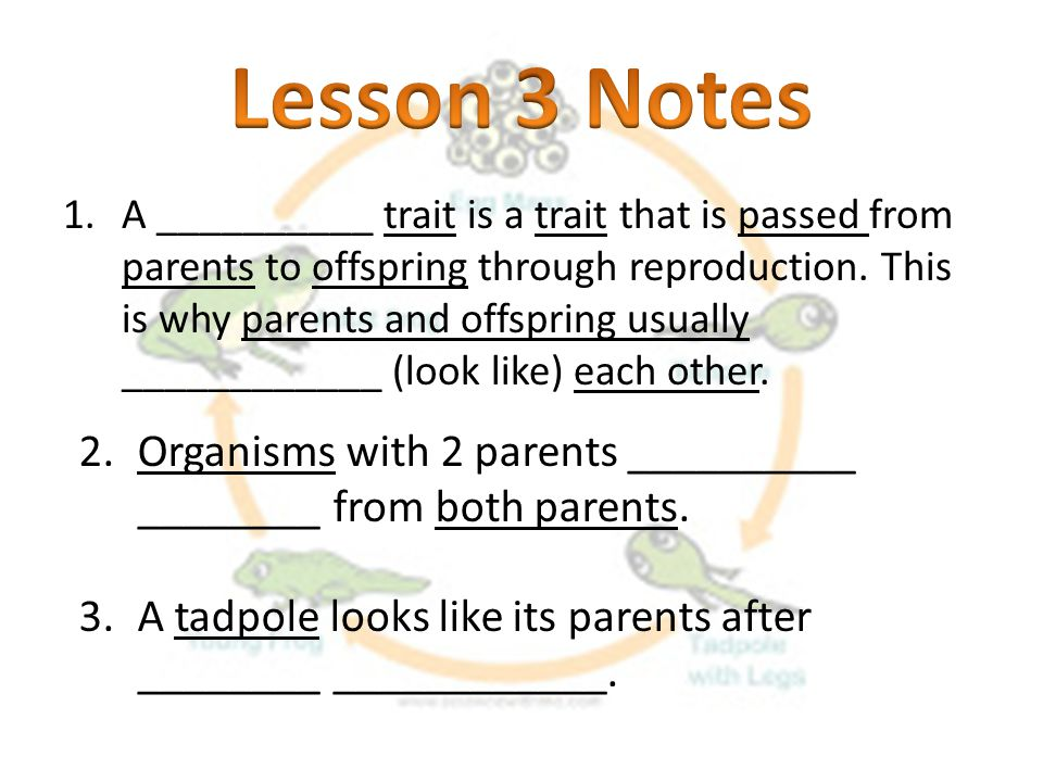 Lesson 3 Notes