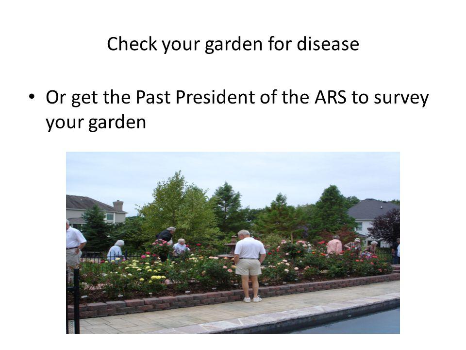 Check your garden for disease