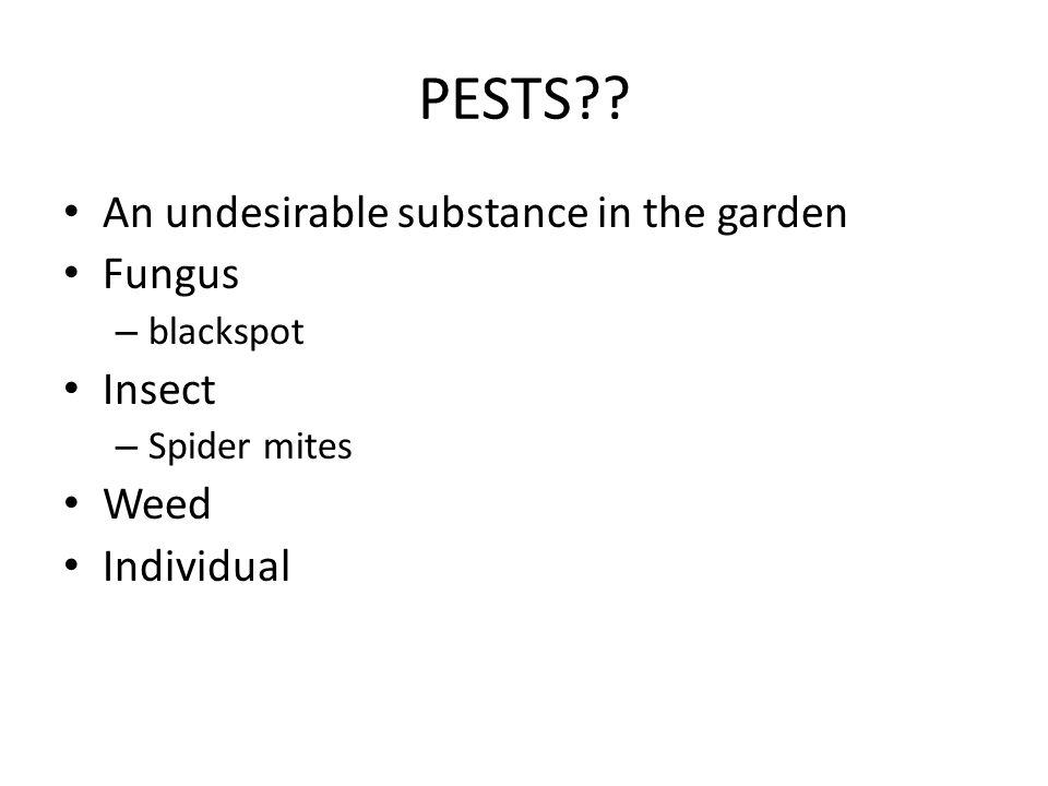 PESTS An undesirable substance in the garden Fungus Insect Weed