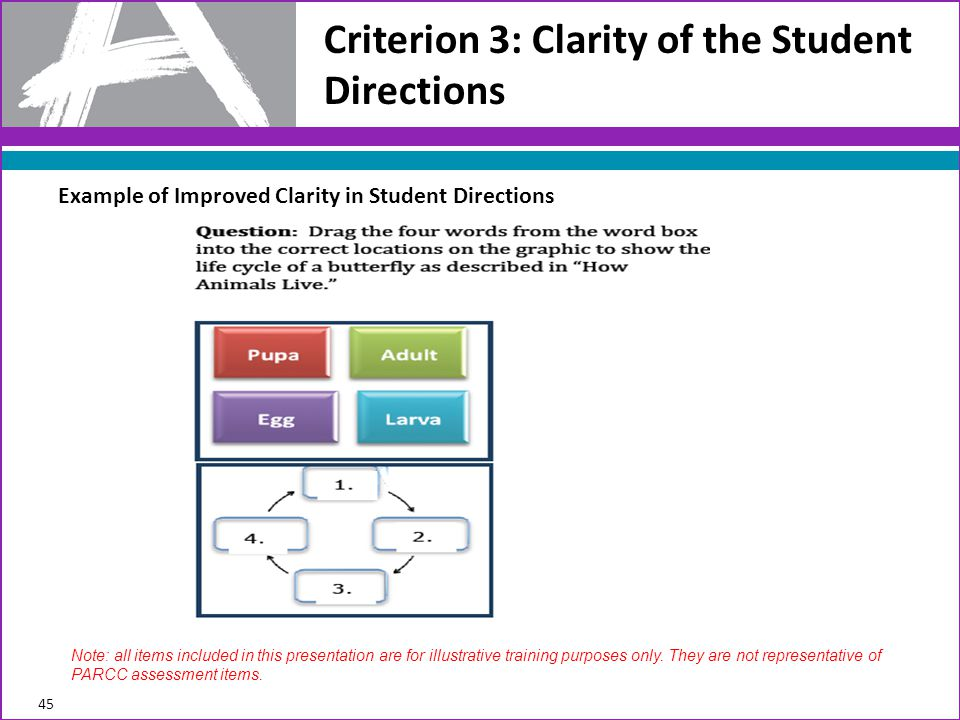 Criterion 3: Clarity of the Student Directions