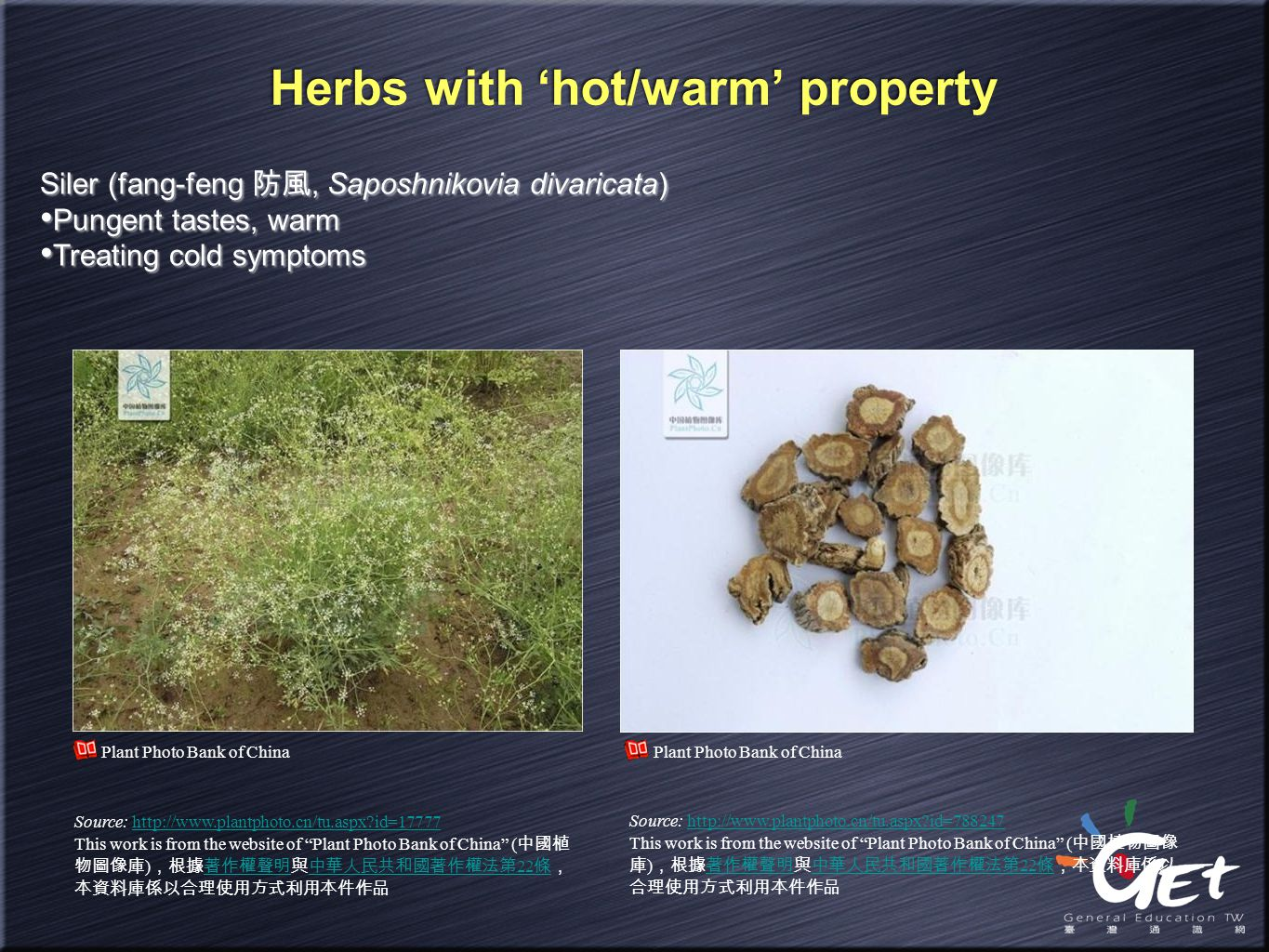 Herbs with 'hot/warm' property