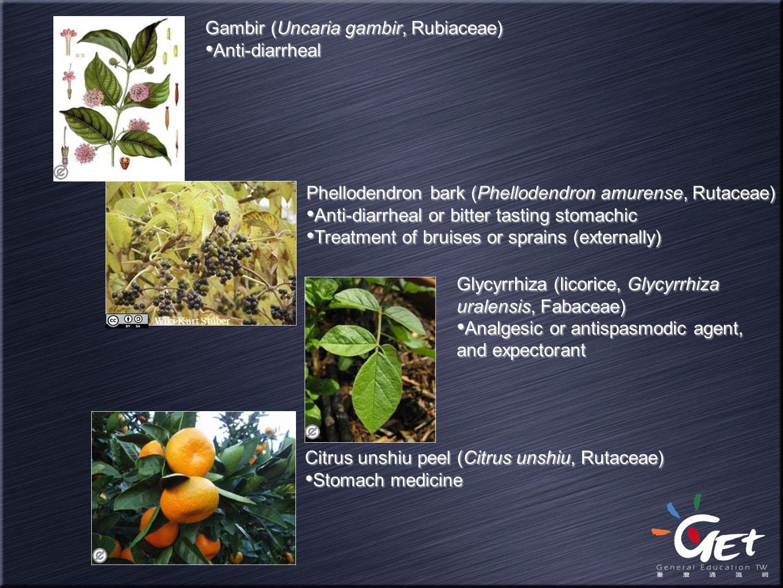 Gambir (Uncaria gambir, Rubiaceae) Anti-diarrheal