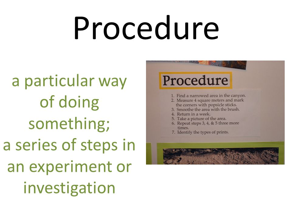 Procedure a particular way of doing something; a series of steps in