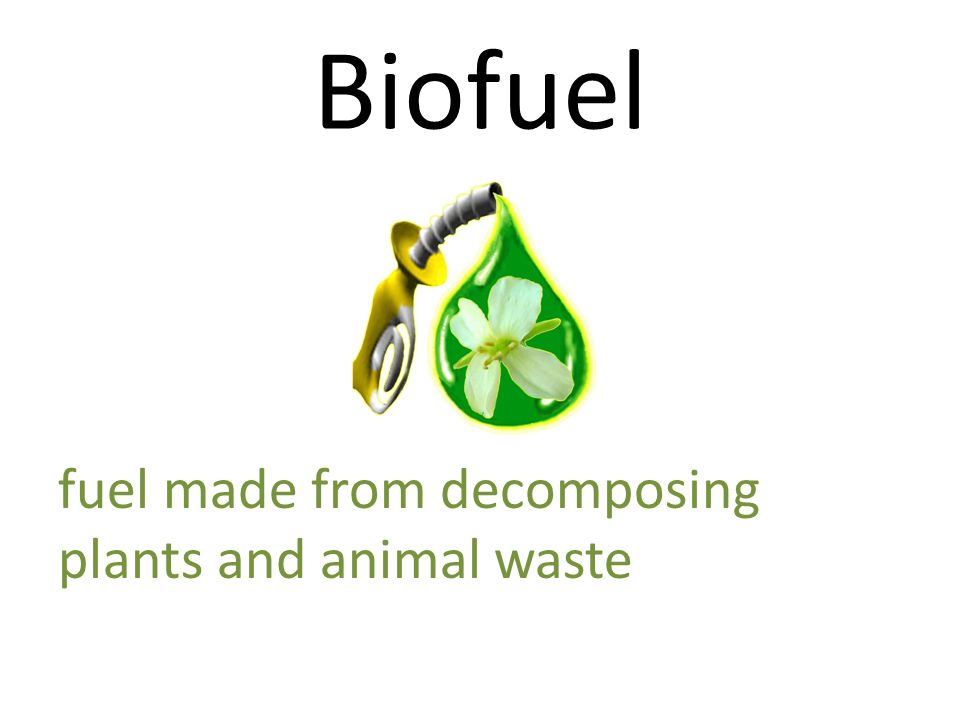 Biofuel fuel made from decomposing plants and animal waste