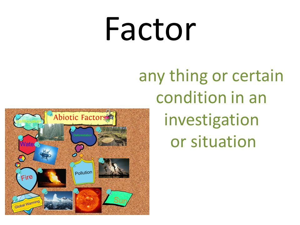 Factor any thing or certain condition in an investigation or situation