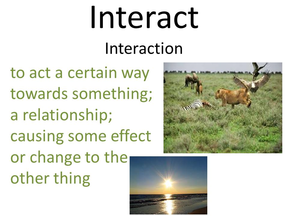 Interact Interaction to act a certain way towards something; a relationship; causing some effect or change to the other thing.