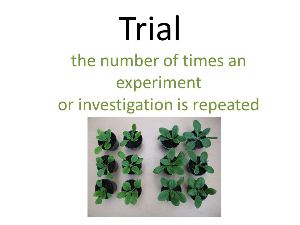 Trial the number of times an experiment or investigation is repeated