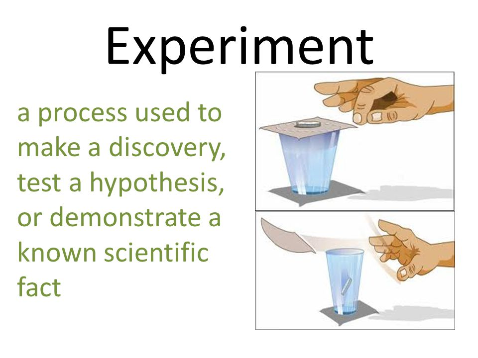 Experiment a process used to make a discovery, test a hypothesis,