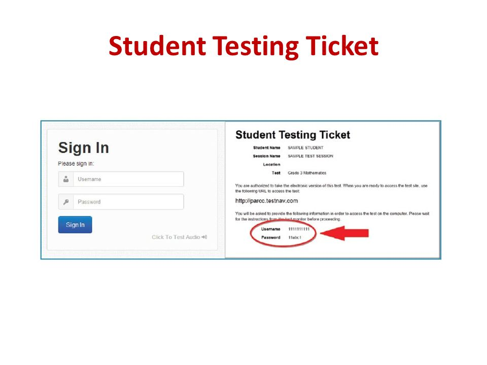 Student Testing Ticket