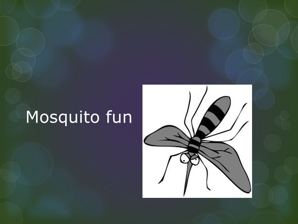 Mosquito fun ppt video online download 1 mosquito fun toneelgroepblik Gallery