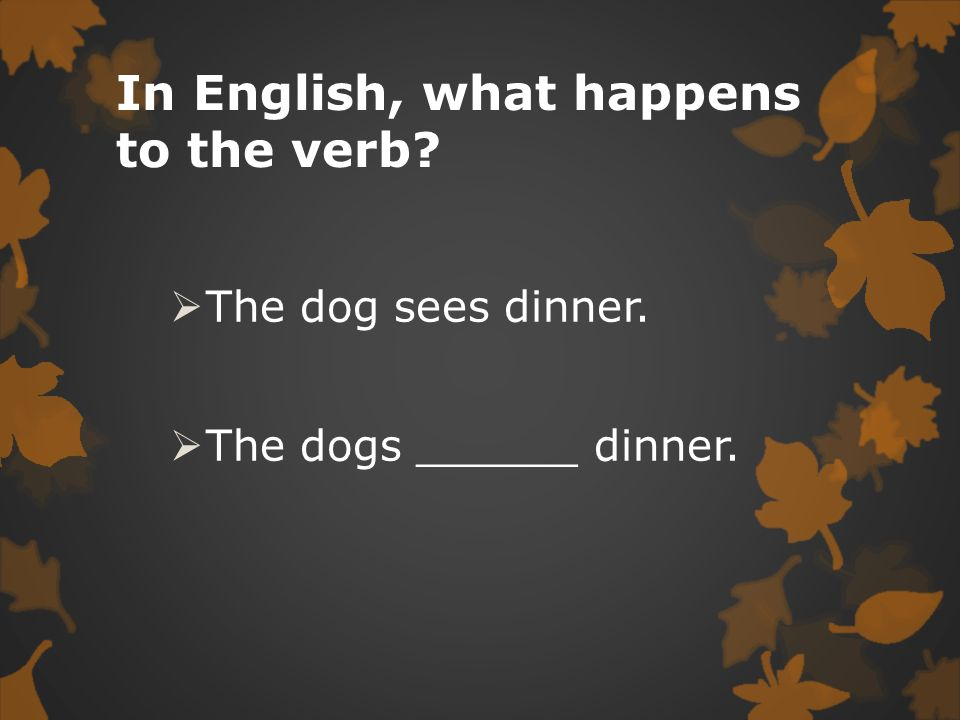 In English, what happens to the verb