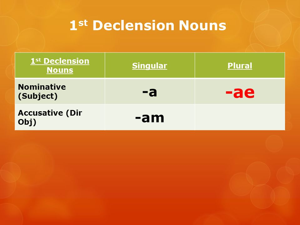 -ae 1st Declension Nouns -a -am 1st Declension Nouns Singular Plural