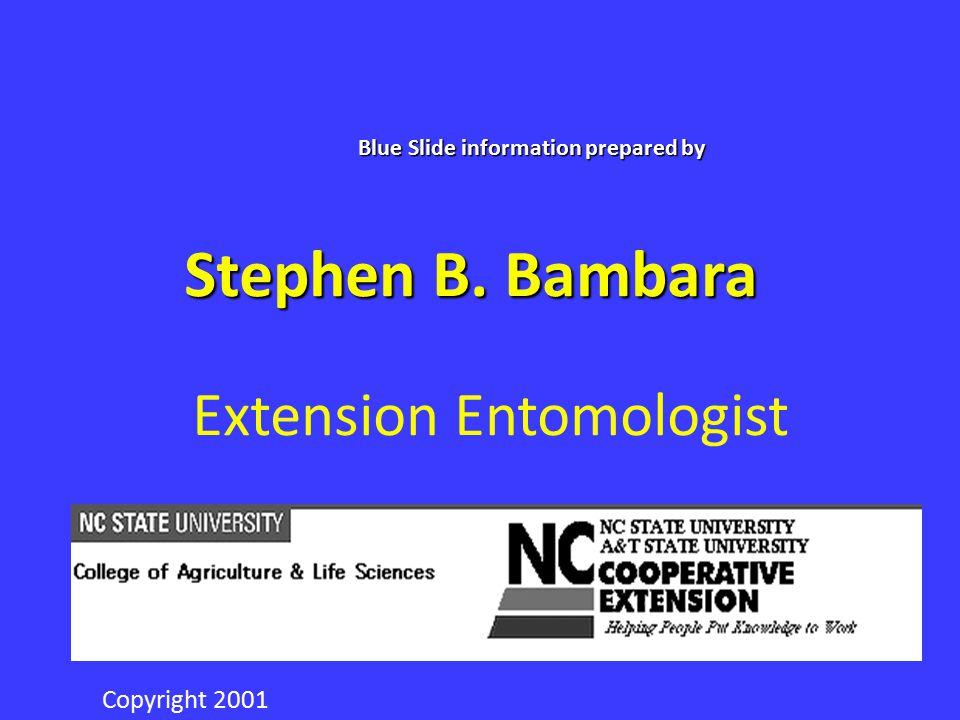 Stephen B. Bambara Extension Entomologist NC STATE UNIVERSITY