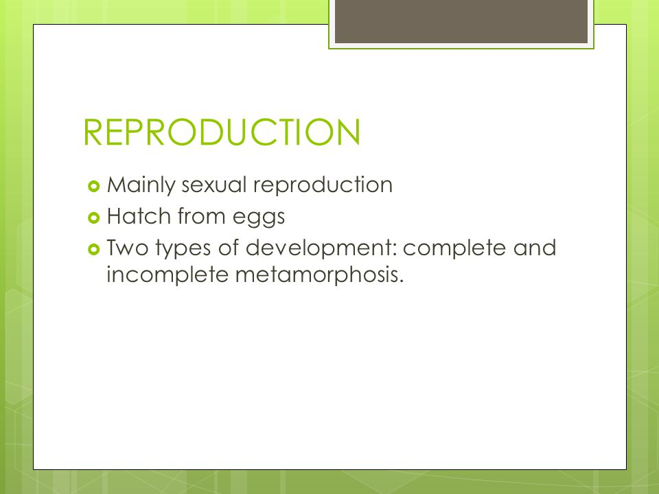 REPRODUCTION Mainly sexual reproduction Hatch from eggs