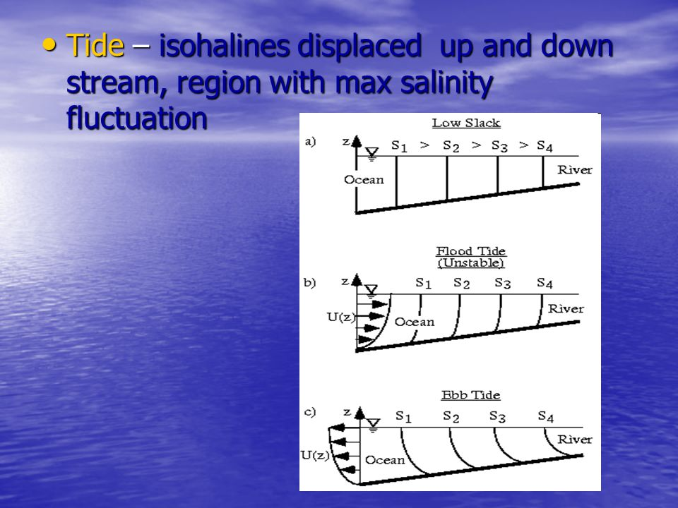 Tide – isohalines displaced up and down stream, region with max salinity fluctuation