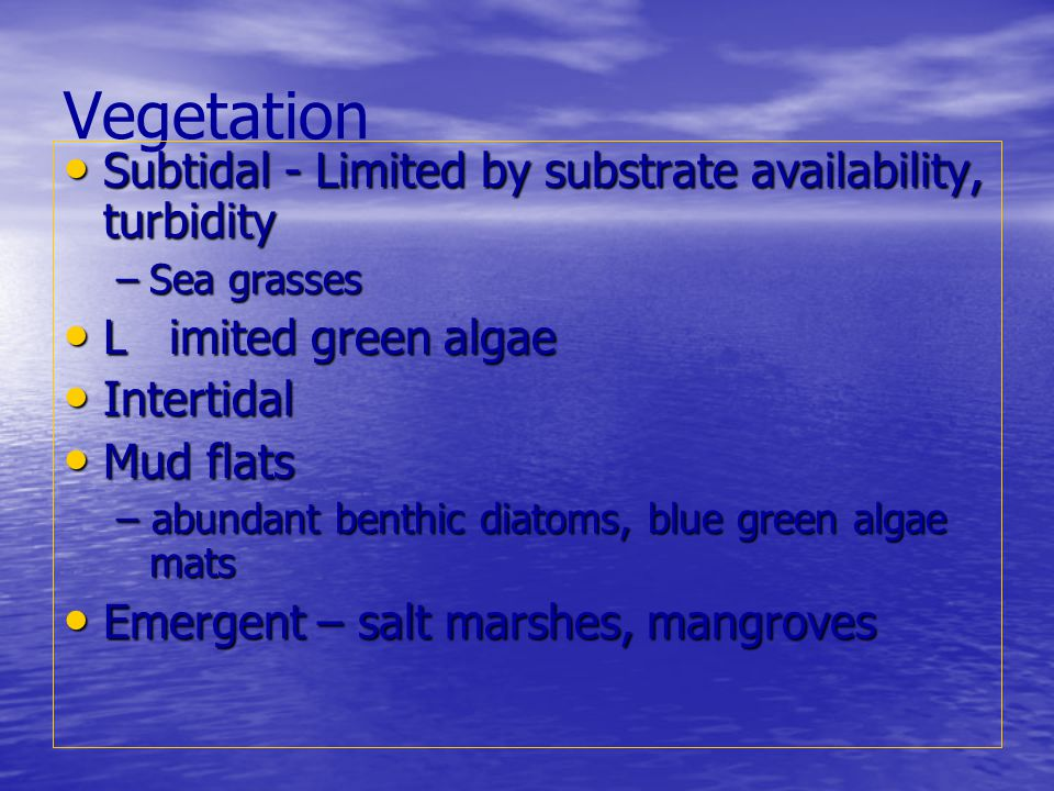 Vegetation Subtidal - Limited by substrate availability, turbidity