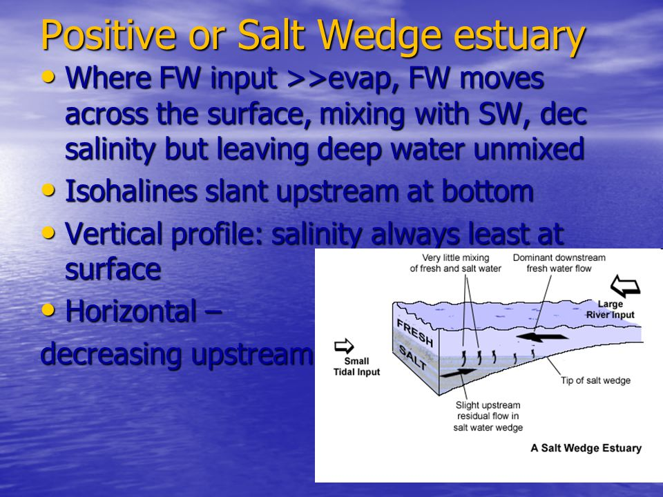 Positive or Salt Wedge estuary