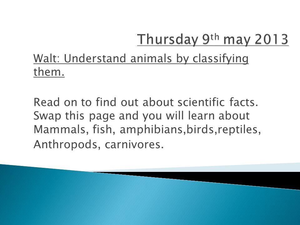 Thursday 9th may 2013 Walt: Understand animals by classifying them.