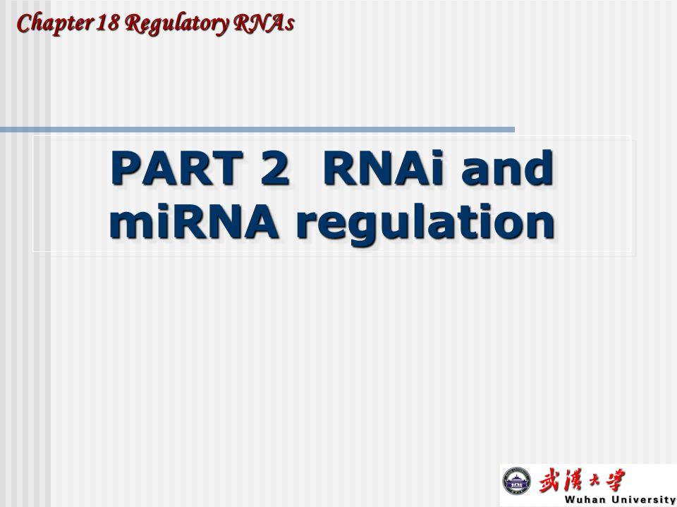 PART 2 RNAi and miRNA regulation