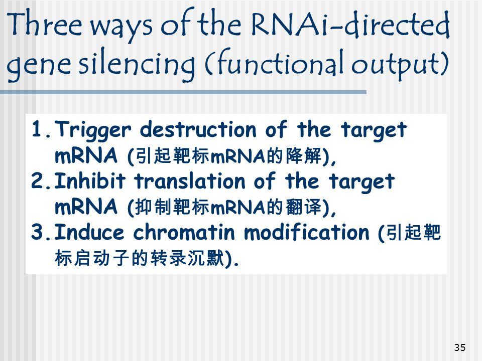 Three ways of the RNAi-directed gene silencing (functional output)