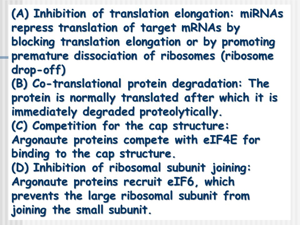 (A) Inhibition of translation elongation: miRNAs repress translation of target mRNAs by blocking translation elongation or by promoting premature dissociation of ribosomes (ribosome drop-off)