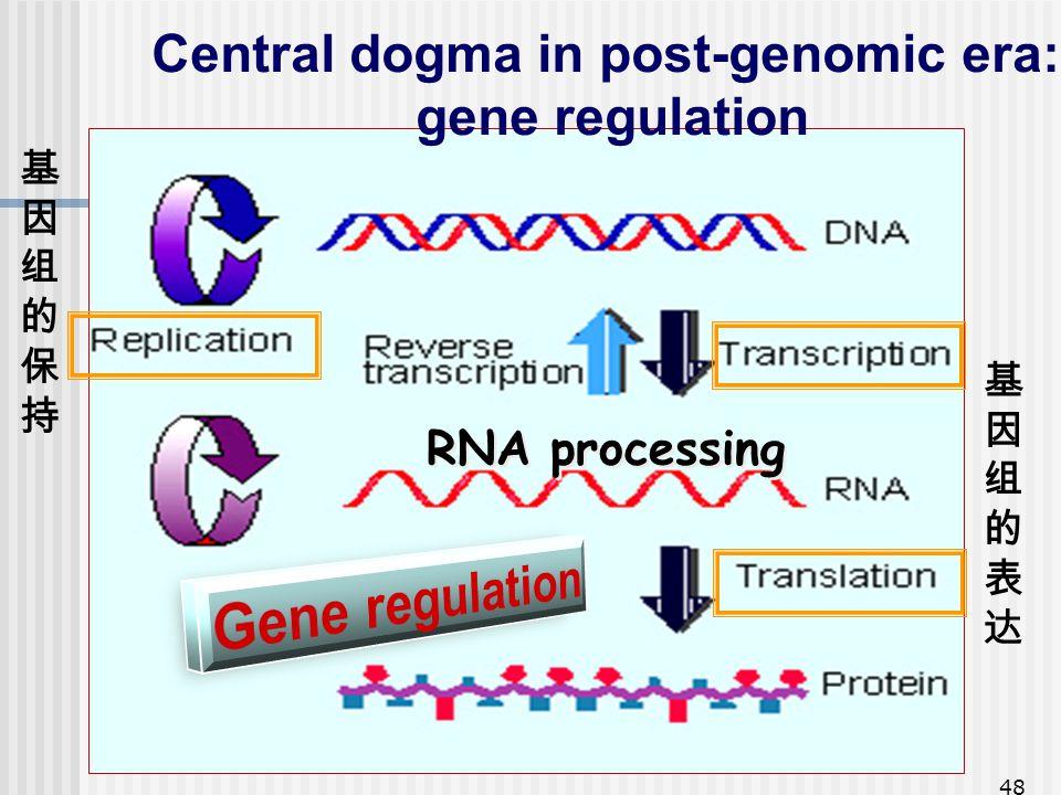 Central dogma in post-genomic era:
