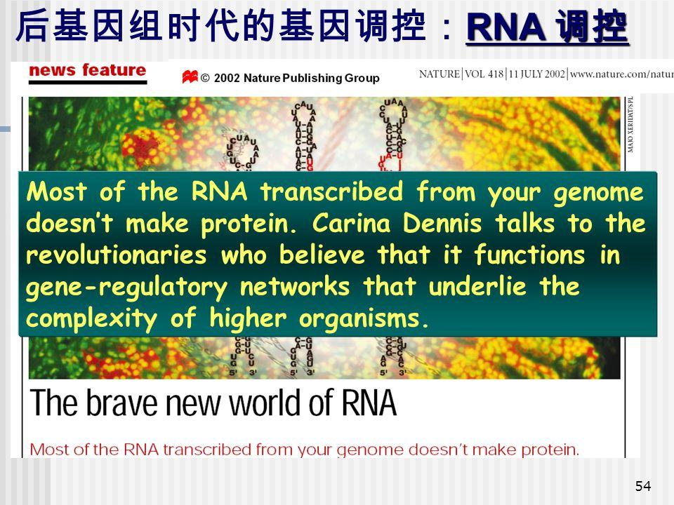 后基因组时代的基因调控:RNA 调控