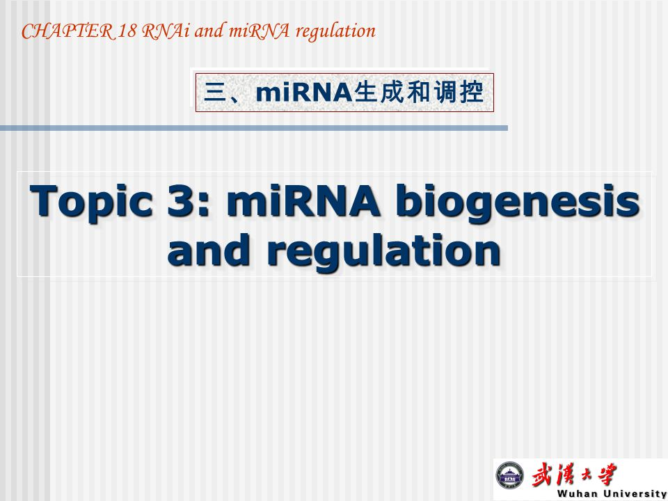 Topic 3: miRNA biogenesis and regulation