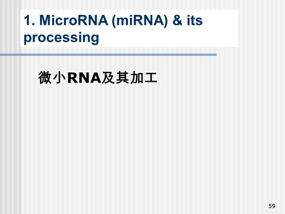 1. MicroRNA (miRNA) & its processing