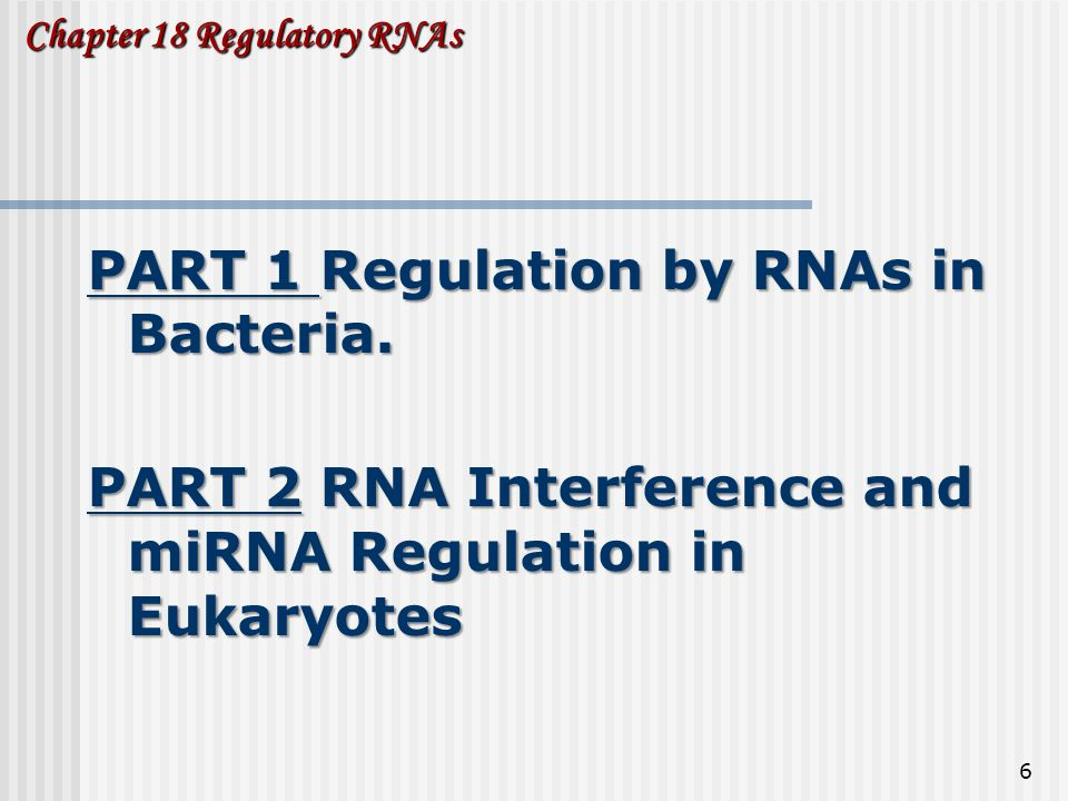 Chapter 18 Regulatory RNAs