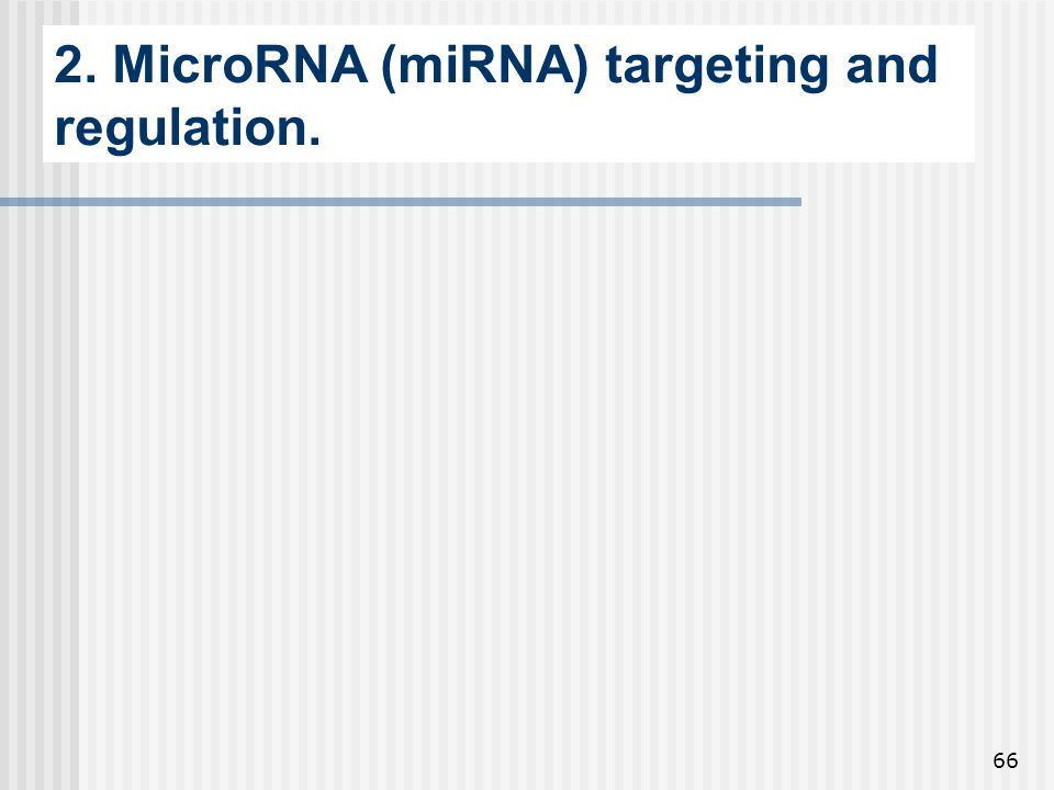 2. MicroRNA (miRNA) targeting and regulation.