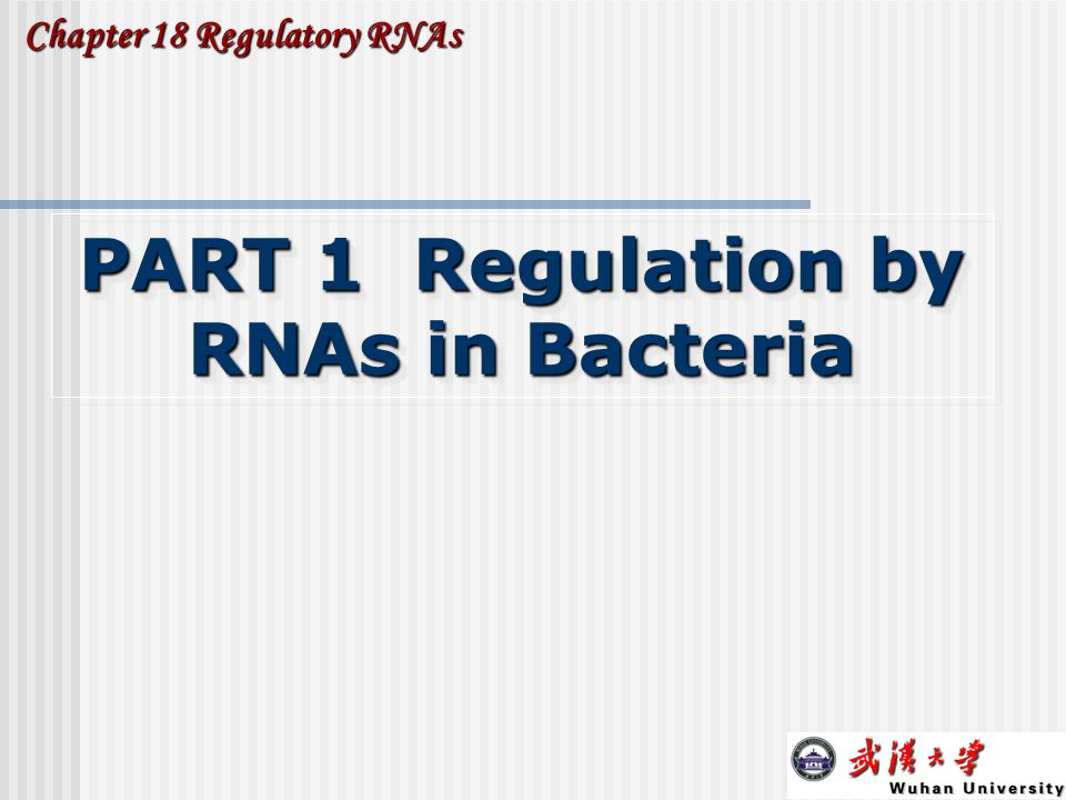 PART 1 Regulation by RNAs in Bacteria
