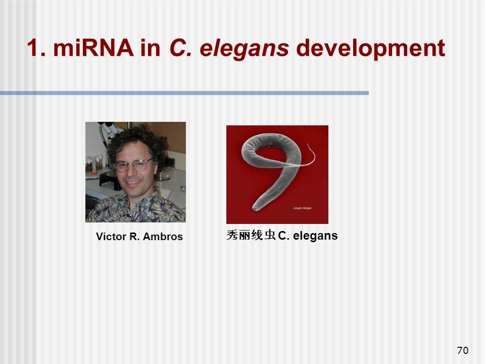 1. miRNA in C. elegans development