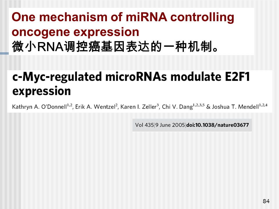 One mechanism of miRNA controlling oncogene expression