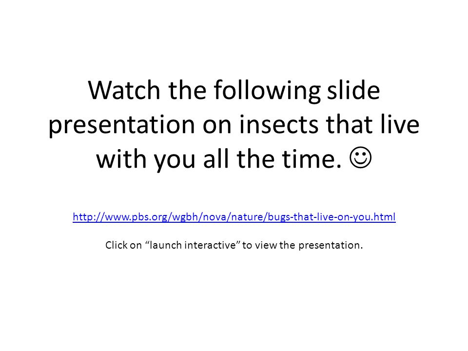 Watch the following slide presentation on insects that live with you all the time.