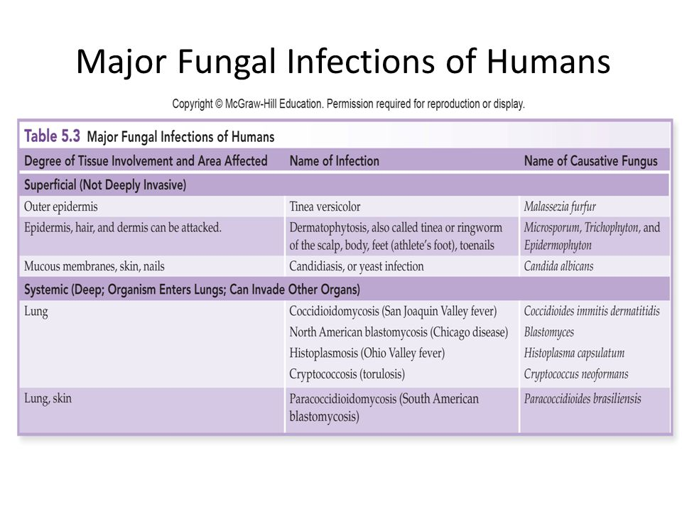 Major Fungal Infections of Humans