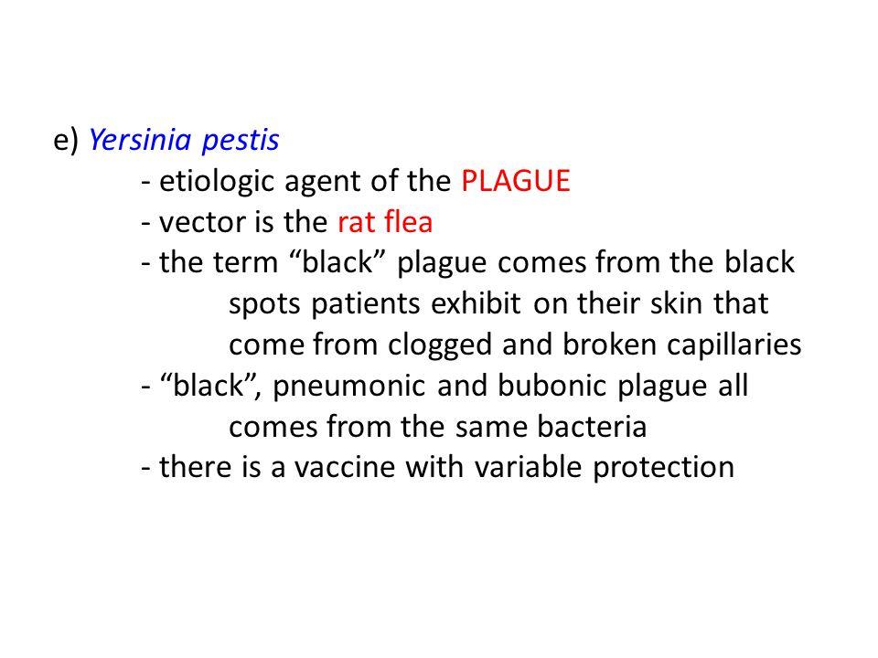 e) Yersinia pestis. - etiologic agent of the PLAGUE