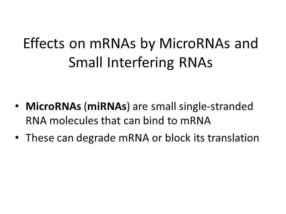 Effects on mRNAs by MicroRNAs and Small Interfering RNAs