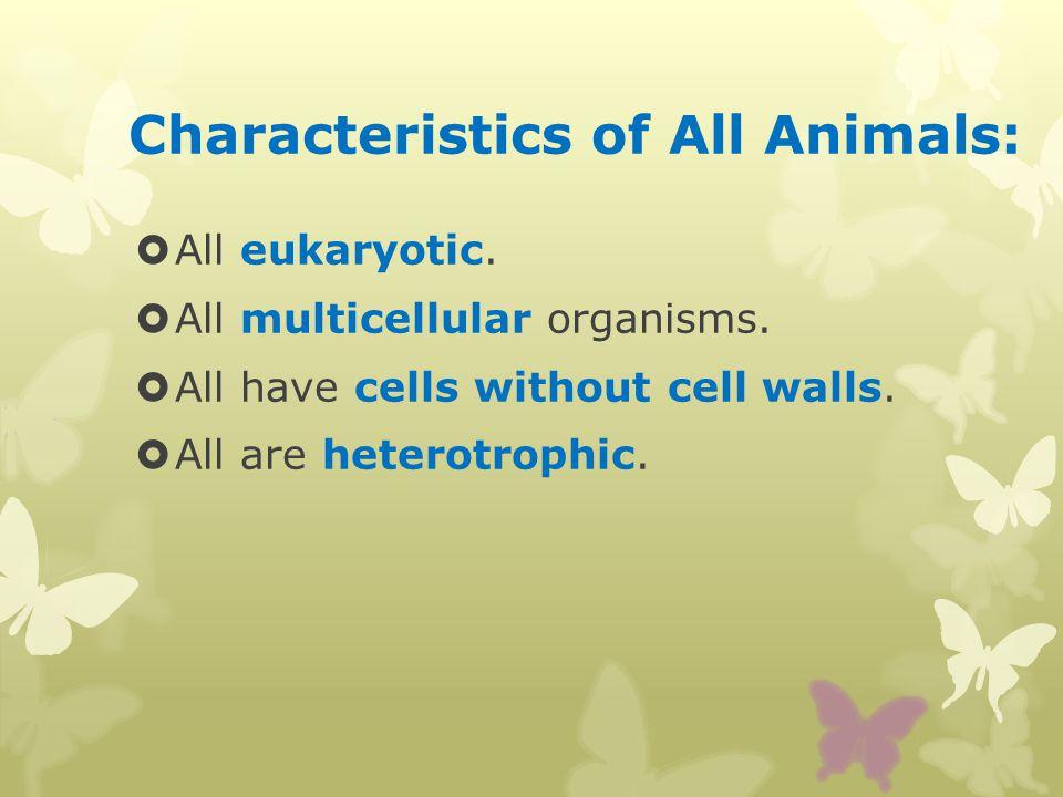 Characteristics of All Animals: