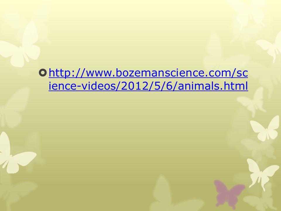 http://www.bozemanscience.com/sc ience-videos/2012/5/6/animals.html