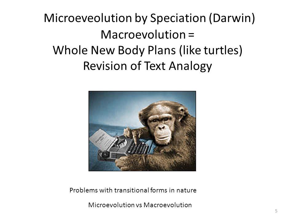 Microevolution vs Macroevolution