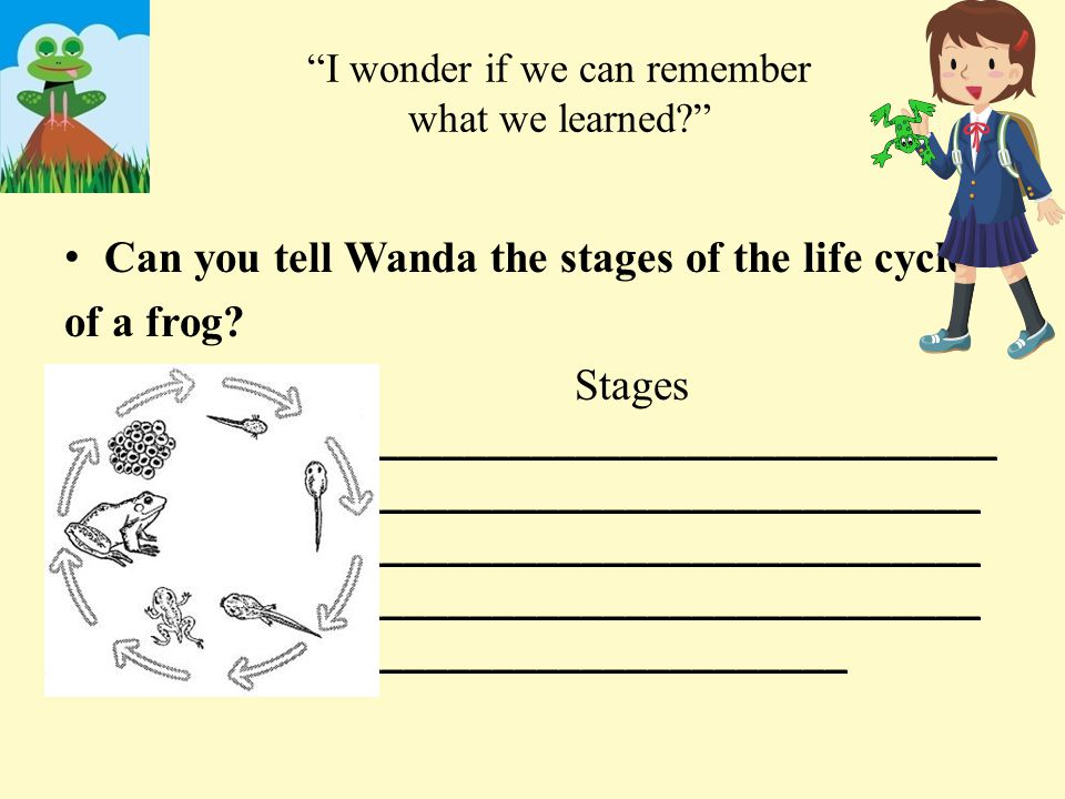 I wonder if we can remember what we learned